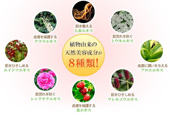 image_step4_01